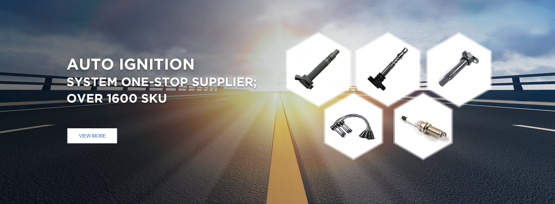 Auto Ignition System Products